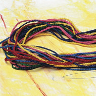 Colored Laces with Tips (pack of 12)