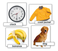Basic Vocabulary Skills Cards