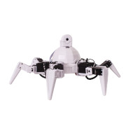 Six The Hexapod Robot