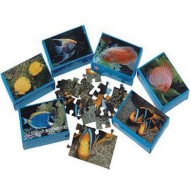 Fish Mini Puzzle Assortment (pack of 12)