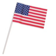 US Flag (pack of 12)
