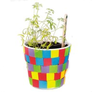Planting Craft Kits