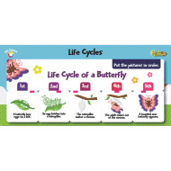 FlipChex™ Life Science: Life Cycles