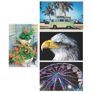 Thera-Jigstick™ Puzzles Set C: Van, Eagle, Ferris Wheel, Flowers (set of 4)