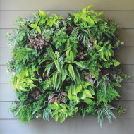 "14"" Living Wall Planter"