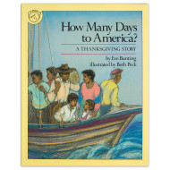 How Many Days To America Book