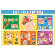 The Five Senses Jigsaw Puzzle, 200 Pieces