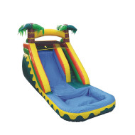 XTreme Inflatable Wet/Dry Slide