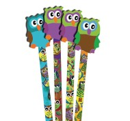 Owl Pencils and Erasers (pack of 36) (pack of 36)