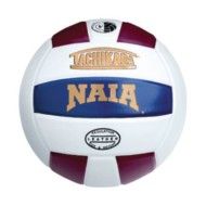 Tachikara® NAIA Leather Volleyball