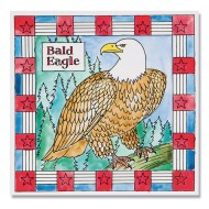 Bald Eagle Paintings (makes 12)