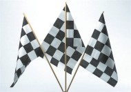 Large Checker Flag (pack of 12)