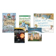 Second Grade Essential Classroom Library Level L Books (pack of 20)