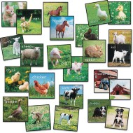 Flagship Carpets® PhotoFun™ Barn Animals Stow-n-Go Seating Squares