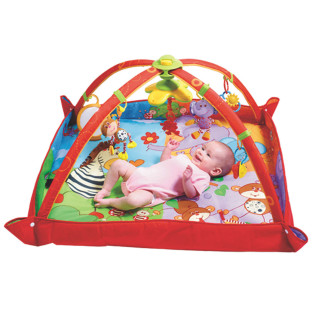 Move and Play Infant Activity Mat