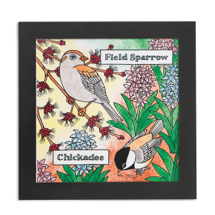 Birdwatcher Portraits Craft Kit
