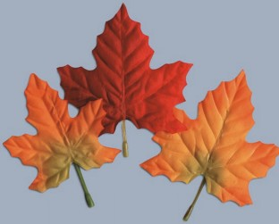 SILK FALL LEAVES 12PKS OF 12