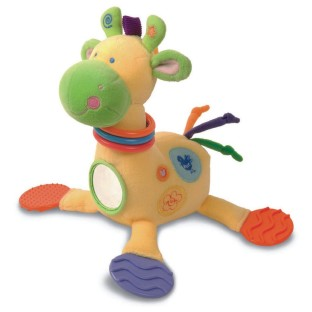 DEVELOPMENTAL ACTIVITY  GIRAFFE ASTHMA FRIENDLY