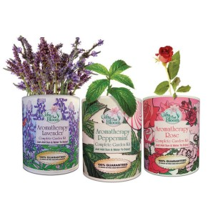 AROMATHERAPY GARDENS IN A CAN SET OF 3
