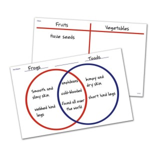WRITE AND WIPE DESK MATS VENN DIAGRAM T CHART