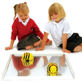 BEE BOT MIRRORED TRAY