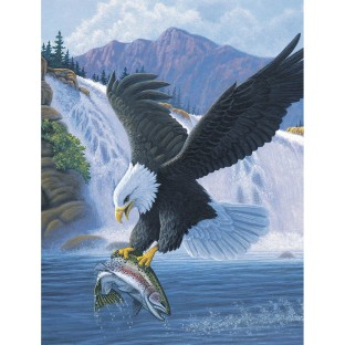 Buy Eagle Paint By Number at S&S Worldwide