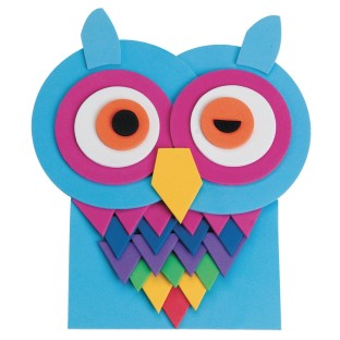 Winking Owl Craft Kit