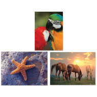 Animals 300-Piece Jigsaw Puzzles (set of 3)