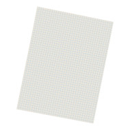 Graph Paper (pack of 500)