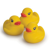 Rubber Duck (pack of 12)