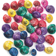 Small Colored Shells, 1-lb  (pack of 1700)