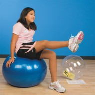 ExerBall™ Exercise Ball Activity Ball