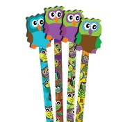 Owl Pencils and Erasers (pack of 36)
