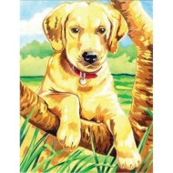 Labrador Retriever Pencil-by-Number