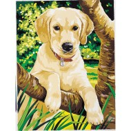 Labrador Retriever Paint-by-Number