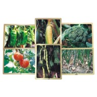 Growing Up Green Healthy Eating Vegetable Puzzle Set (set of 6)