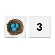Double-Sided Magnetic Numbers Set (pack of 26)