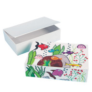 Color-Me™ Boxes (pack of 12)