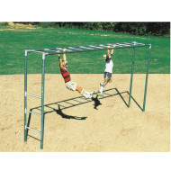Horizontal Playground Ladder
