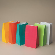 "10"" Solid Color Paper Gift Bags , Neon (pack of 36)"