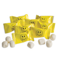 Smile Mints  (bag of 50)