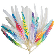 LONG QUILL FEATHERS WHITE