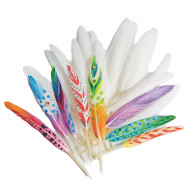 Duck Quill Feathers, White
