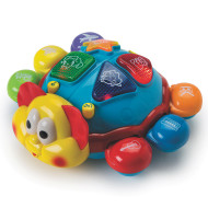 Brainy Buggy Toy