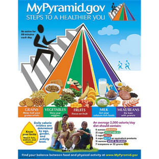 Food Pyramid Learning Chart