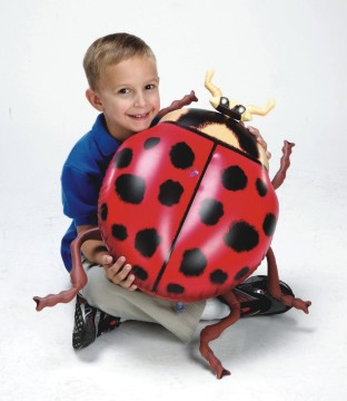 INFLATABLE INSECTS SET OF 5