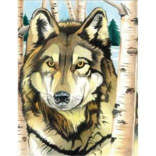 COLORING BY NUMBERS WOLF