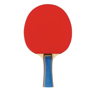 Play Table Tennis like a Pro!
