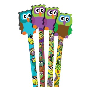 Owl Pencils and Erasers