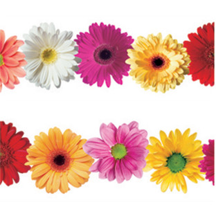 Spring Flowers Bulletin Board Border